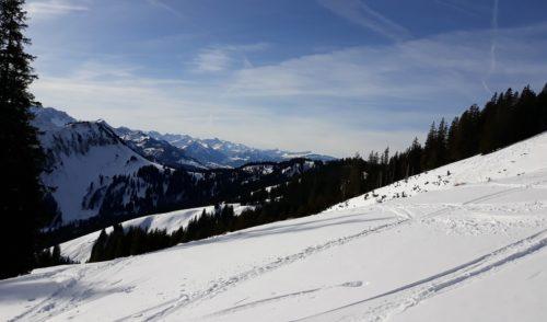 Artikelbild zu Artikel Schneeschuhtour zum Wertacher Hörnle (1659m) am 08.02.2020